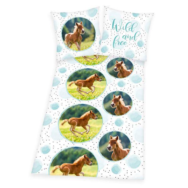 Pferd 44570