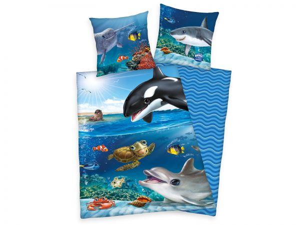 Animal Club Ocean
