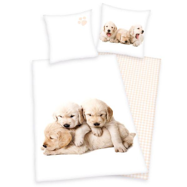 Herding Renforcé Kinder-Wendebettwäsche Hunde 44512-04, 135 x 200 + 80 x 80 cm