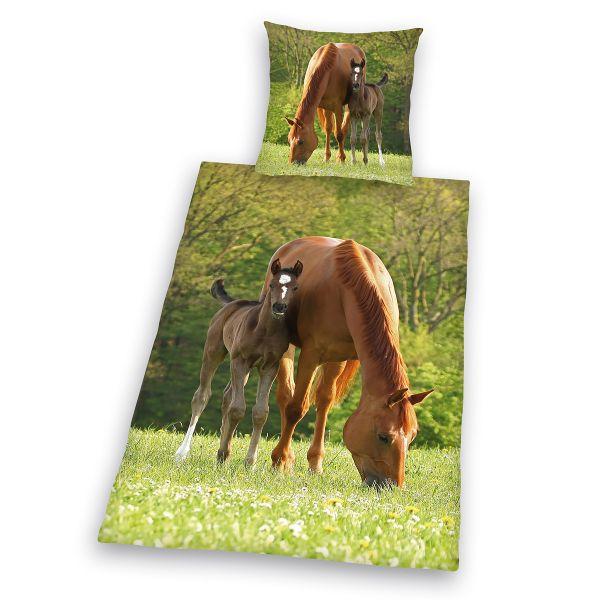 Herding Renforcé Kinderbettwäsche Pferd mit Fohlen 44240-28, 135 x 200 + 80 x 80 cm
