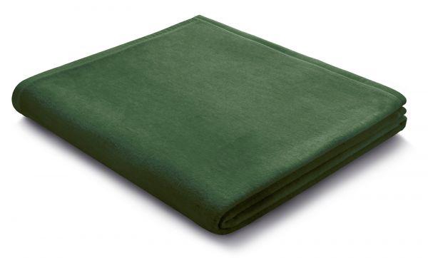 Farbe Alge